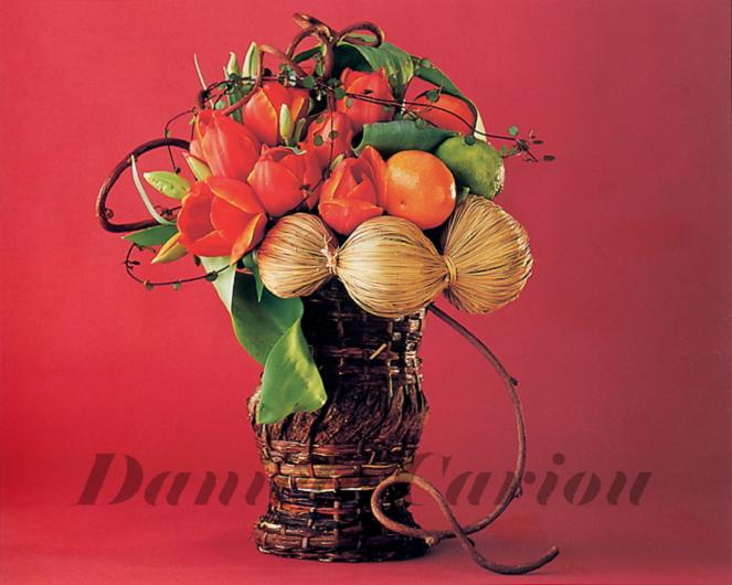 Photo d'art floral,composition P69